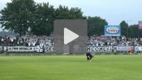 Sandecja - GKS Katowice, doping kibiców
